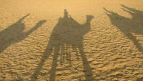 stedentrip MARRAKECH kameel schaduw