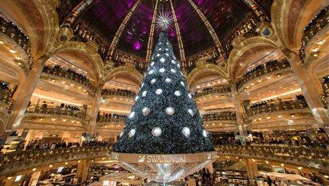 kerstreis Kerstboom